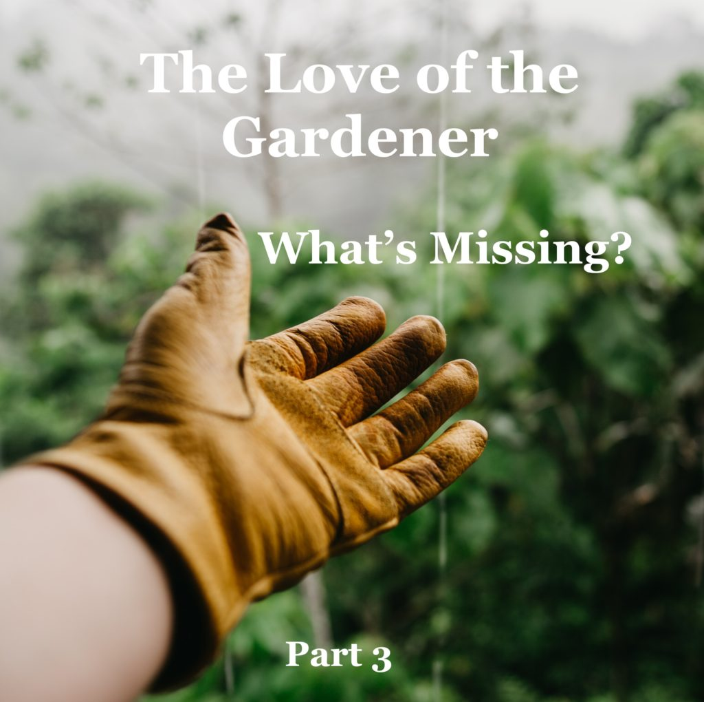 What's Missing? The Love of the Gardener – Part 3
