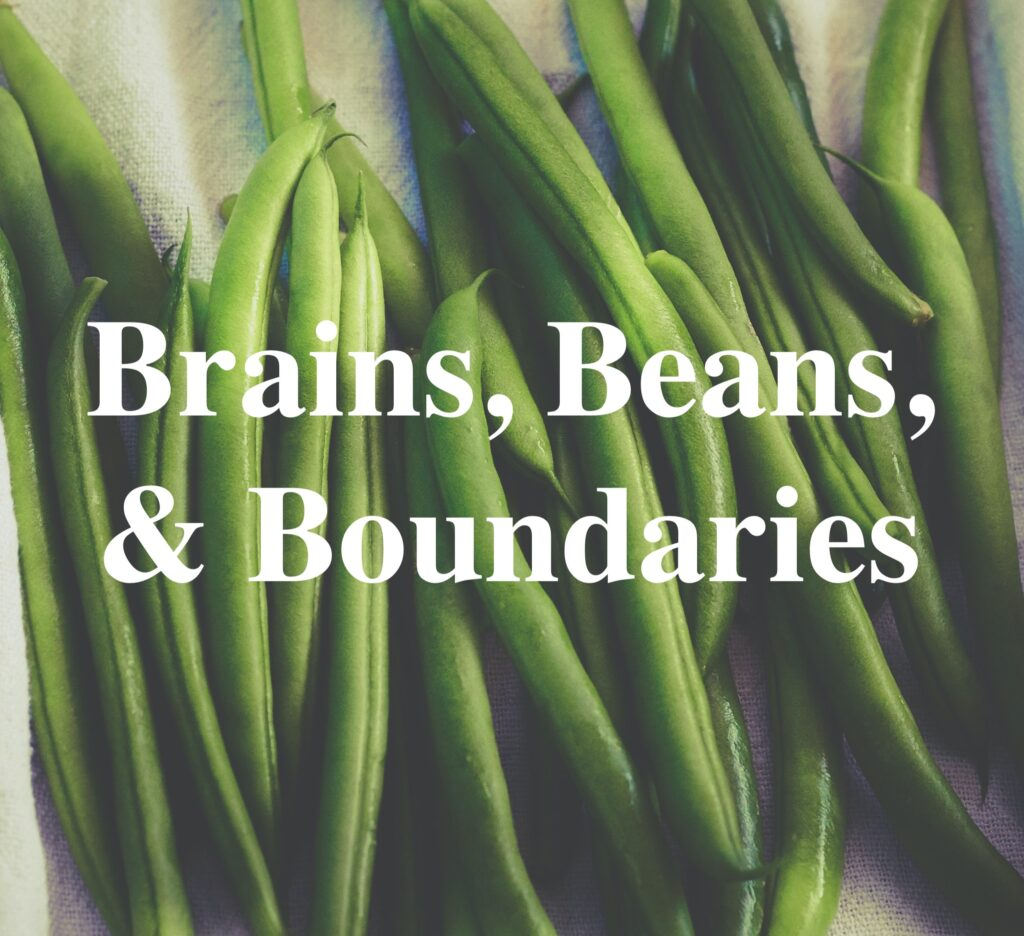 Brains, Beans, and Boundaries